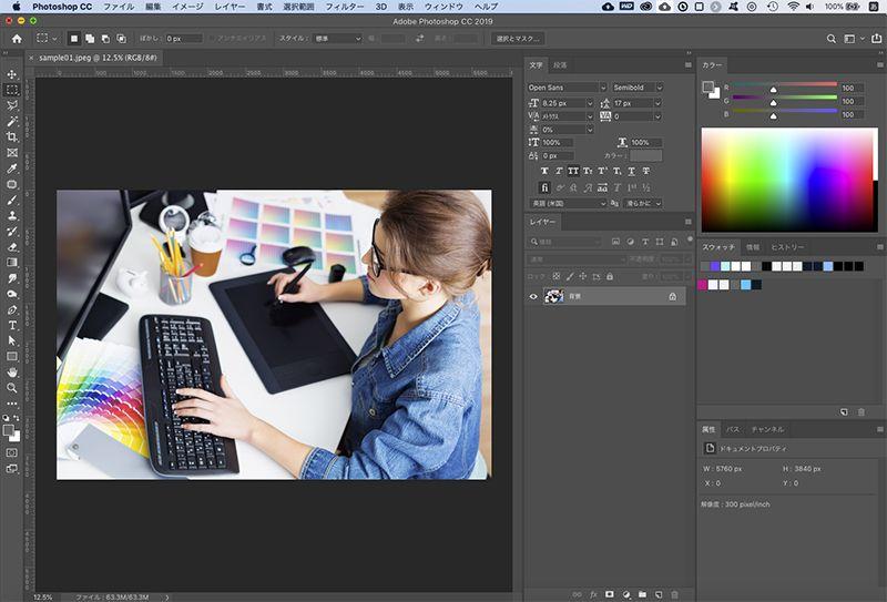 ファイルを開いたPhotoshopの画面